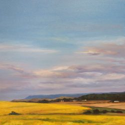 Canola-fields – oil on canvas, 50cm x 50cm – sold