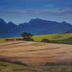 Overberg – oil on canvas, 60cm x 80cm – for sale